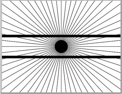 DingDing: 視錯覺 - optical illusion
